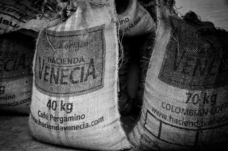 Colombian Coffee Documentary Photo